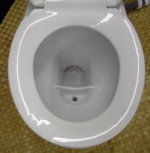urinedivertingtoilet
